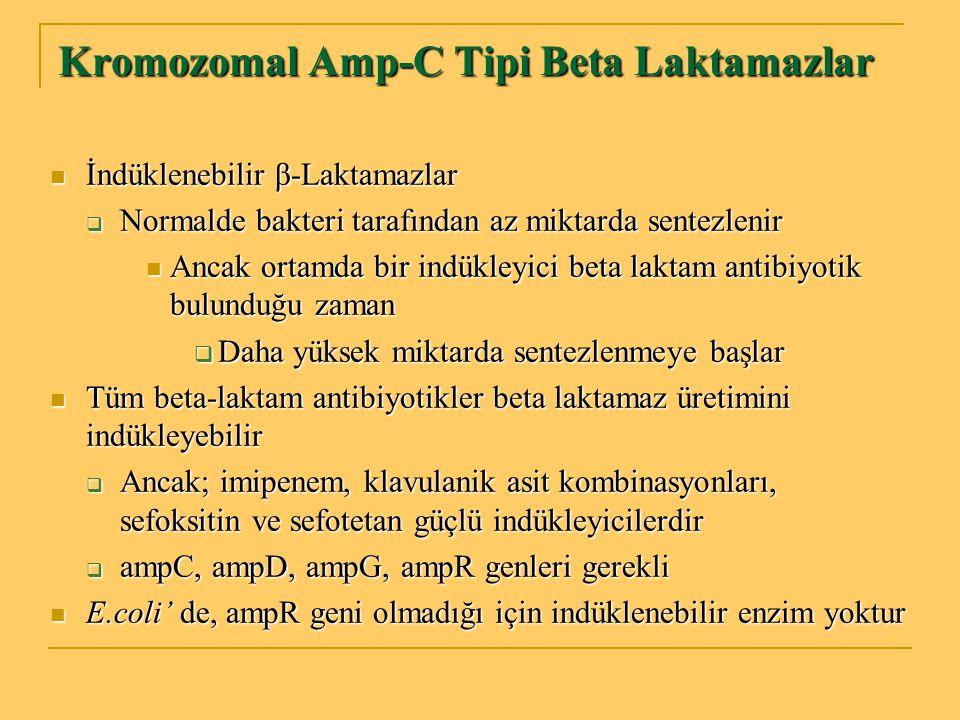Kromozomal Amp-C Tipi Beta Laktamazlar İndüklenebilir β-Laktamazlar İndüklenebilir β-Laktamazlar  Normalde bakteri tarafından az miktarda sentezlenir