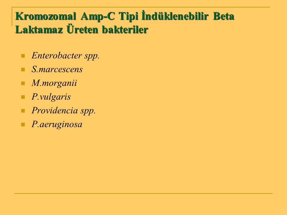 Kromozomal Amp-C Tipi İndüklenebilir Beta Laktamaz Üreten bakteriler Enterobacter spp. S.marcescens M.morganii P.vulgaris Providencia spp. P.aeruginos