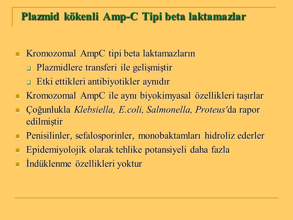 Plazmid kökenli Amp-C Tipi beta laktamazlar Plazmid kökenli Amp-C Tipi beta laktamazlar Kromozomal AmpC tipi beta laktamazların Kromozomal AmpC tipi b