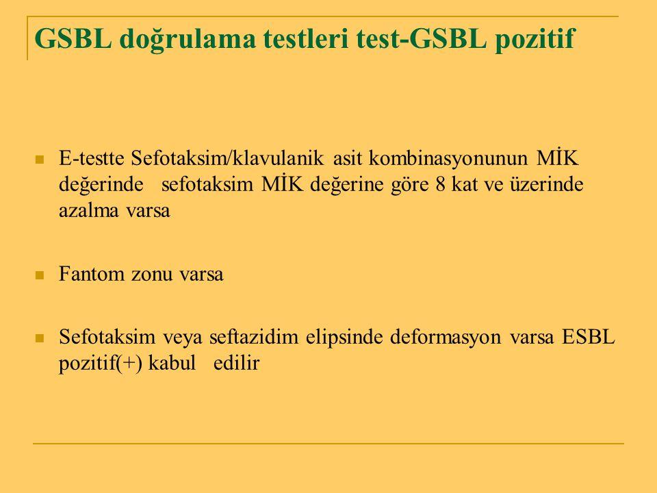 GSBL doğrulama testleri test-GSBL pozitif E-testte Sefotaksim/klavulanik asit kombinasyonunun MİK değerinde sefotaksim MİK değerine göre 8 kat ve üzer