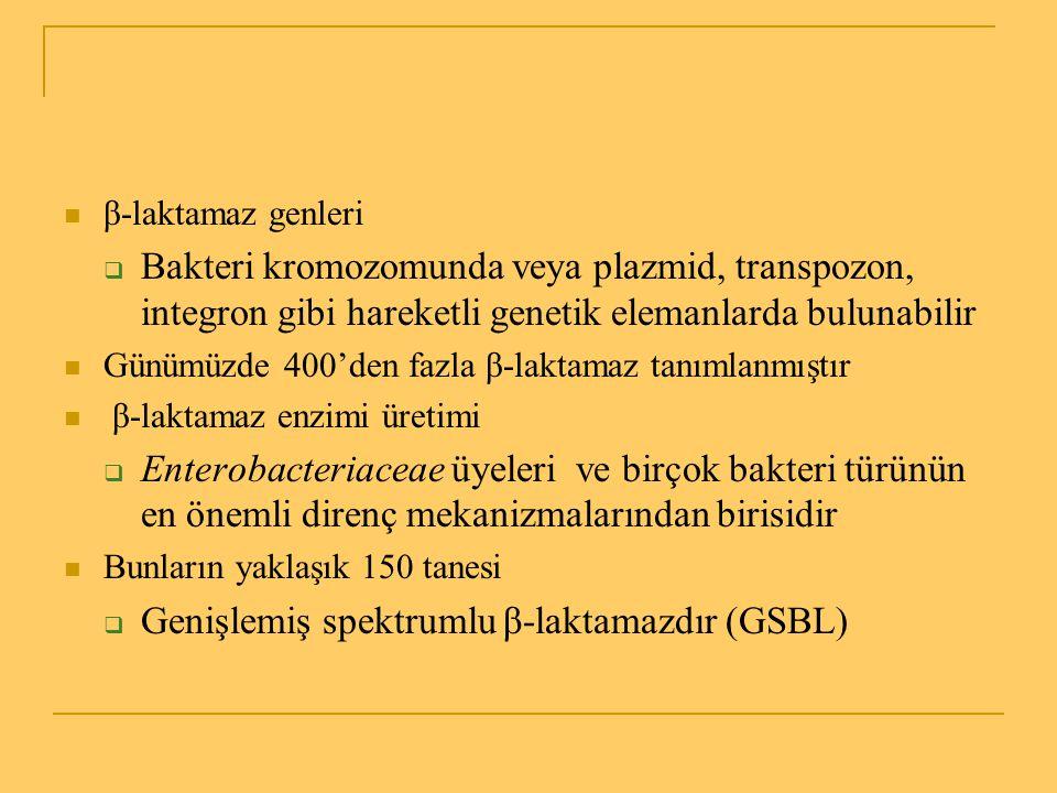 GSBL doğrulama yöntemleri (2) Doğrulayıcı testler (Konfirmasyon) Doğrulayıcı testler (Konfirmasyon)  MİK broth dilüsyon Tek başına 3.kuşak sefalosporin veya klavulanik asitle kombine Tek başına 3.kuşak sefalosporin veya klavulanik asitle kombine  E test (MİK GSBL stripleri) Stribin bir tarafında seftazidim ve diğer tarafında seftazidim-klavulanik asit bulunur Stribin bir tarafında seftazidim ve diğer tarafında seftazidim-klavulanik asit bulunur