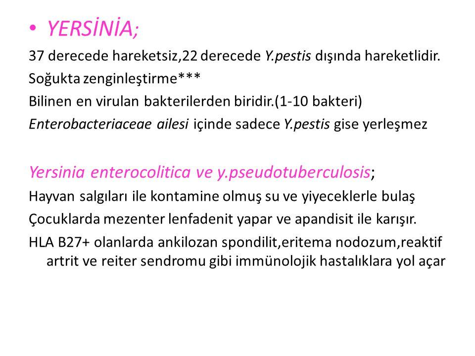 S. Dysanteriae nin Shiga toksini entero-nöro toksindir. Basili dizanteri Salmonellozun aksine uzun süre taşıyıcılık yoktur. Salmonellalar gibi laktozu