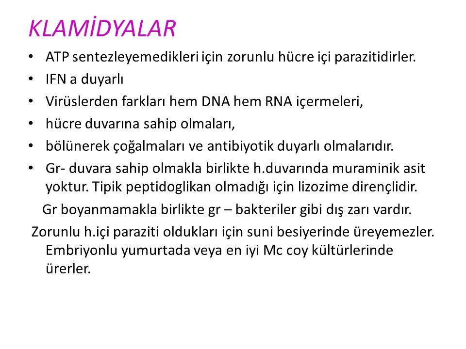 UREAPLASMA Mycoplasma benzeri Üreaz+ non-gonokoksik üretrit