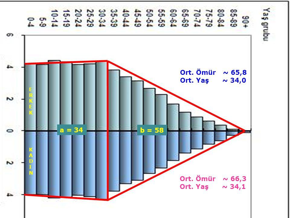32 ERKEKERKEK KADINKADIN Ort. Ömür ~ 65,8 Ort. Yaş ~ 34,0 a = 34 b = 58 Ort. Ömür ~ 66,3 Ort. Yaş ~ 34,1