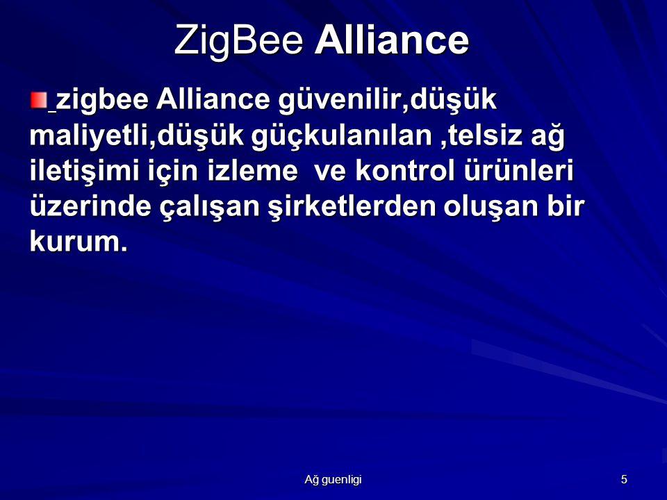 Ağ guenligi 6 ZigBee Alliance Promoters