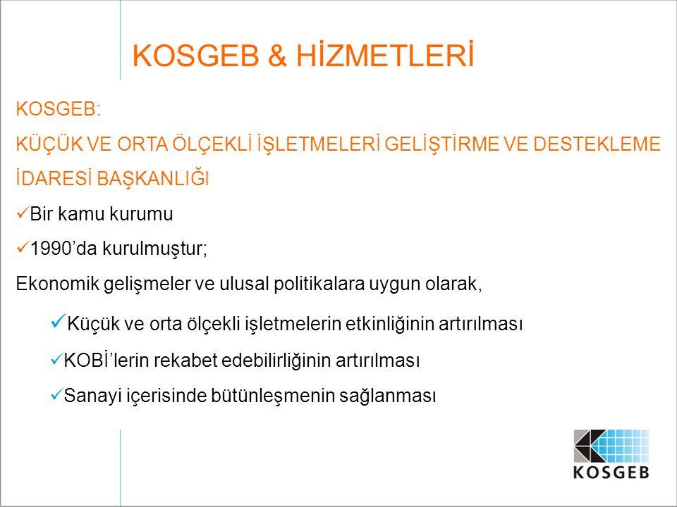 Faaliyetler; Türk KOBİ'leri için destek mekanizmalarının geliştirilmesi, Girişimciliğin teşvik edilmesi, AR-GE odaklı iş olanaklarının üretilmesi, KOBİ'lere ilgili bilgilerin ulaştırılması, KOBİ'lerin kapasitesinin artırılması