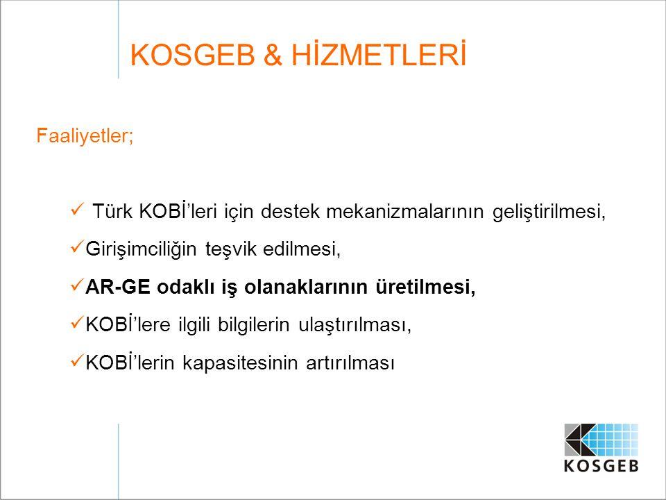 Faaliyetler; Türk KOBİ'leri için destek mekanizmalarının geliştirilmesi, Girişimciliğin teşvik edilmesi, AR-GE odaklı iş olanaklarının üretilmesi, KOB