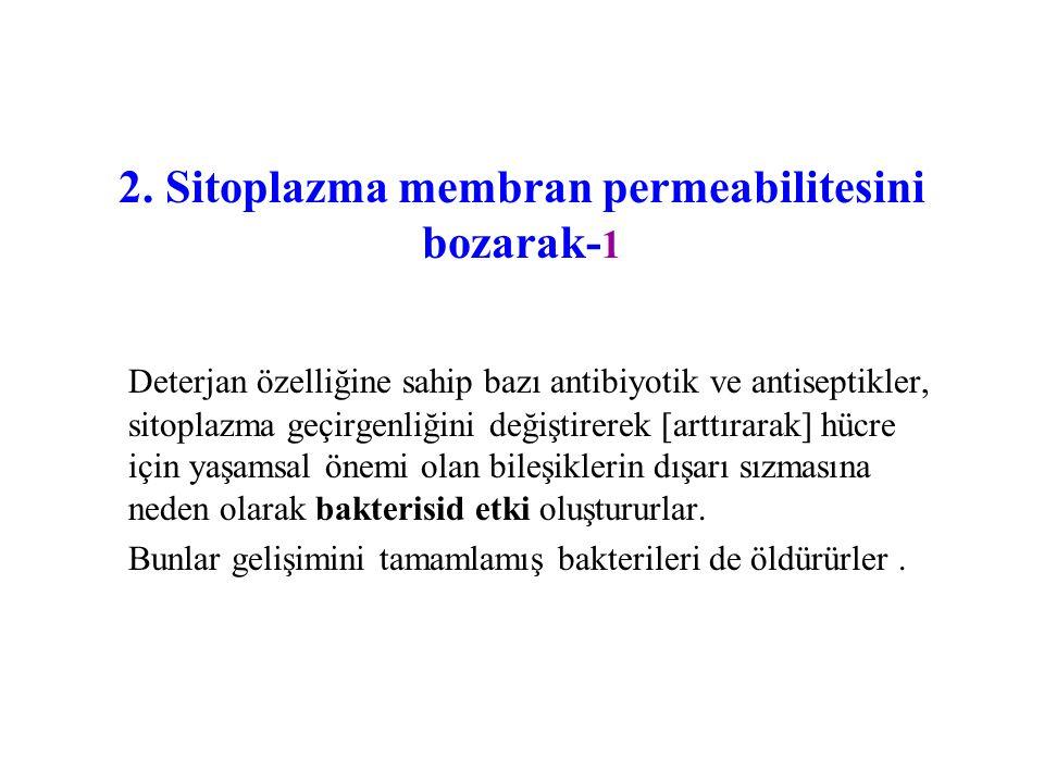 2. Sitoplazma membran permeabilitesini bozarak- 1 Deterjan özelliğine sahip bazı antibiyotik ve antiseptikler, sitoplazma geçirgenliğini değiştirerek