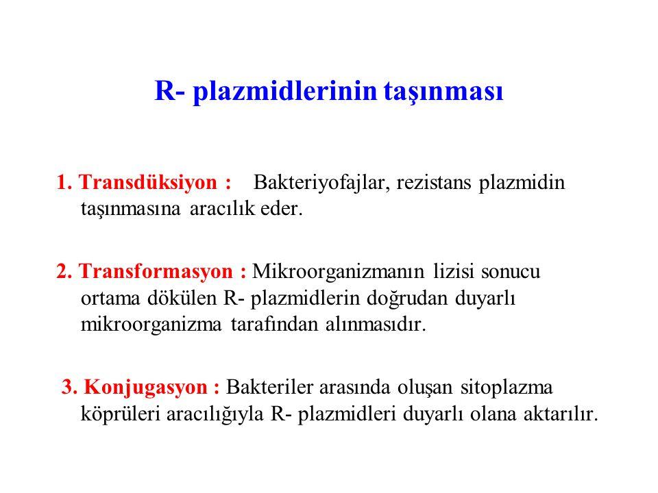 R- plazmidlerinin taşınması 1.