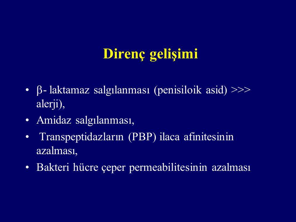 Direnç gelişimi  - laktamaz salgılanması (penisiloik asid) >>> alerji), Amidaz salgılanması, Transpeptidazların (PBP) ilaca afinitesinin azalması, Ba