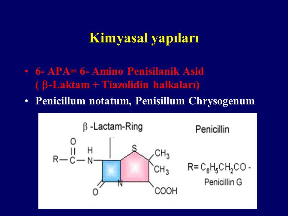 Kimyasal yapıları 6- APA= 6- Amino Penisilanik Asid (  -Laktam + Tiazolidin halkaları) Penicillum notatum, Penisillum Chrysogenum