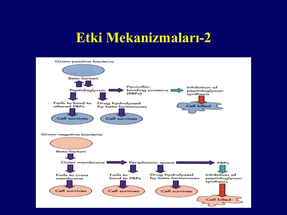 Etki Mekanizmaları-2