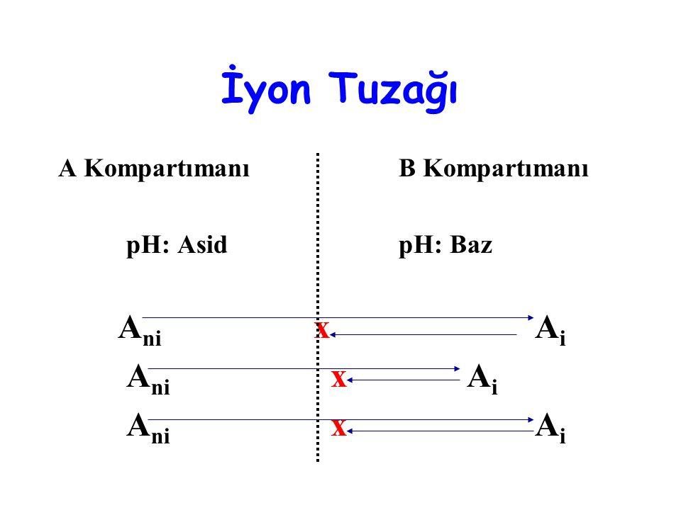 İyon Tuzağı A KompartımanıB Kompartımanı pH: AsidpH: Baz A ni xA i