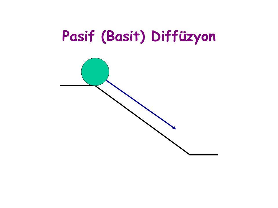 Pasif (Basit) Diffüzyon