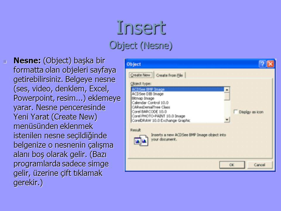 Insert O bject (Nesne) Nesne: (Object) başka bir formatta olan objeleri sayfaya getirebilirsiniz.