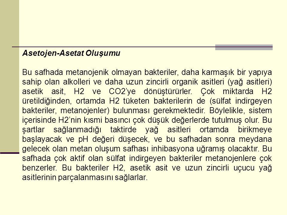 Asetojen-Asetat Oluşumu Bu safhada metanojenik olmayan bakteriler, daha karmaşık bir yapıya sahip olan alkolleri ve daha uzun zincirli organik asitler