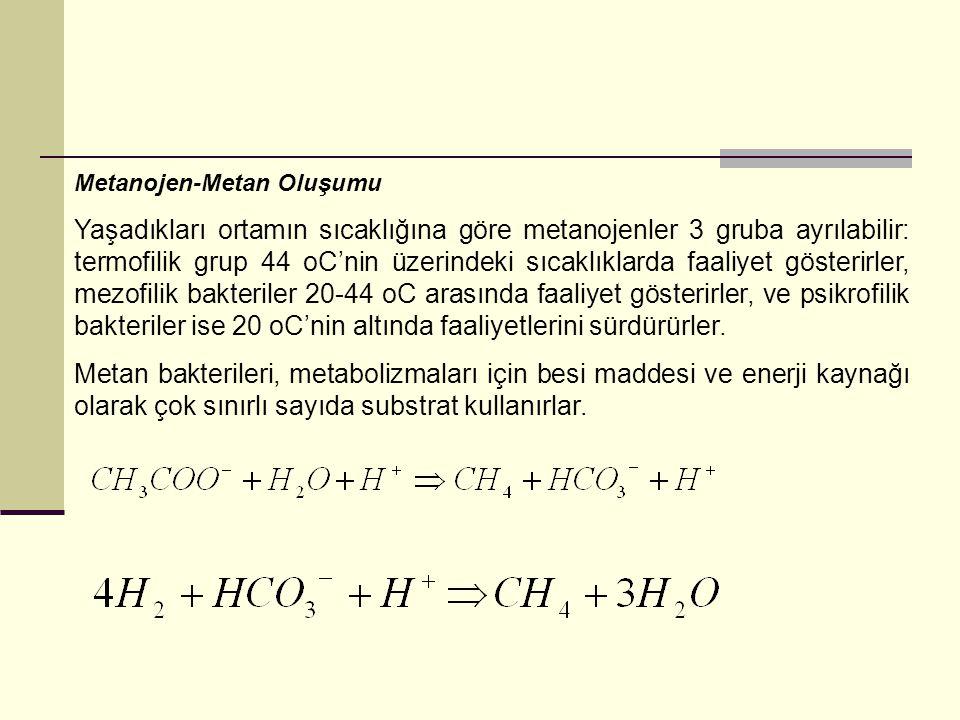 Metanojen-Metan Oluşumu Yaşadıkları ortamın sıcaklığına göre metanojenler 3 gruba ayrılabilir: termofilik grup 44 oC'nin üzerindeki sıcaklıklarda faal