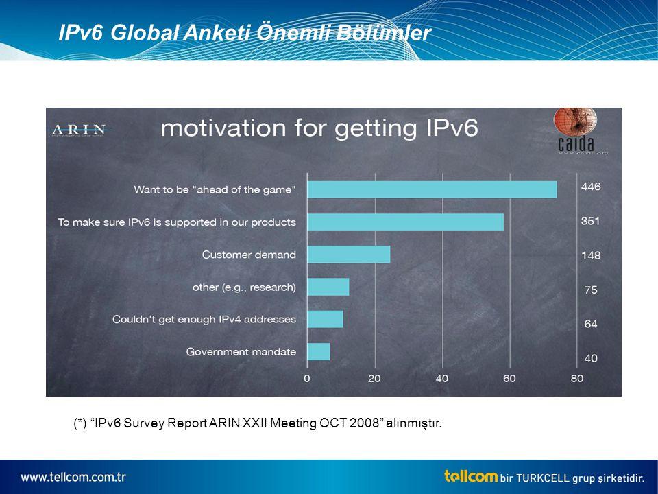 IPv6 Global Anketi Önemli Bölümler (*) IPv6 Survey Report ARIN XXII Meeting OCT 2008 alınmıştır.
