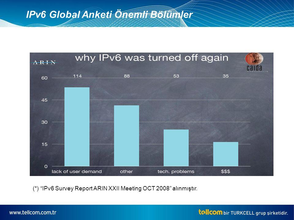 IPv6 Global Anketi Önemli Bölümler