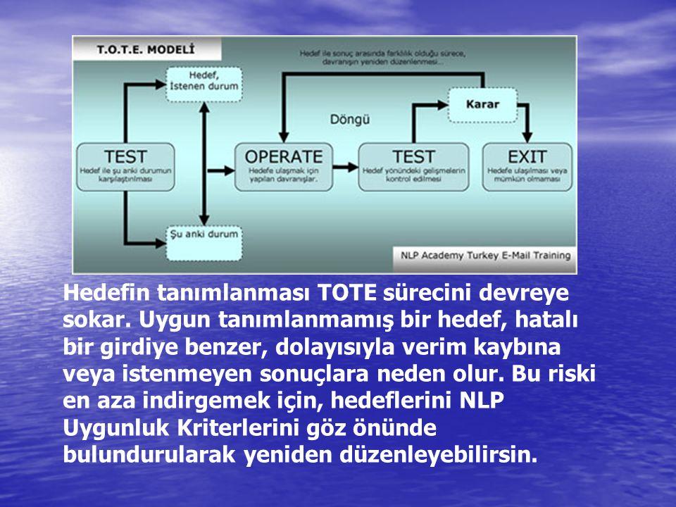 Hedefin tanımlanması TOTE sürecini devreye sokar. Uygun tanımlanmamış bir hedef, hatalı bir girdiye benzer, dolayısıyla verim kaybına veya istenmeyen