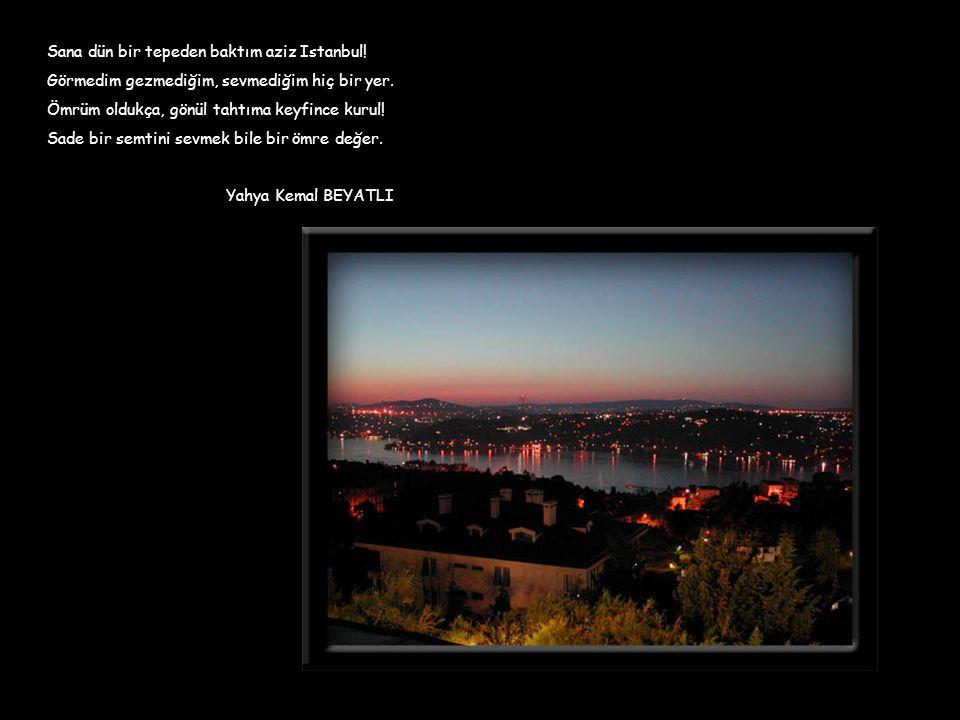 Sana dün bir tepeden baktım aziz Istanbul! Görmedim gezmediğim, sevmediğim hiç bir yer. Ömrüm oldukça, gönül tahtıma keyfince kurul! Sade bir semtini