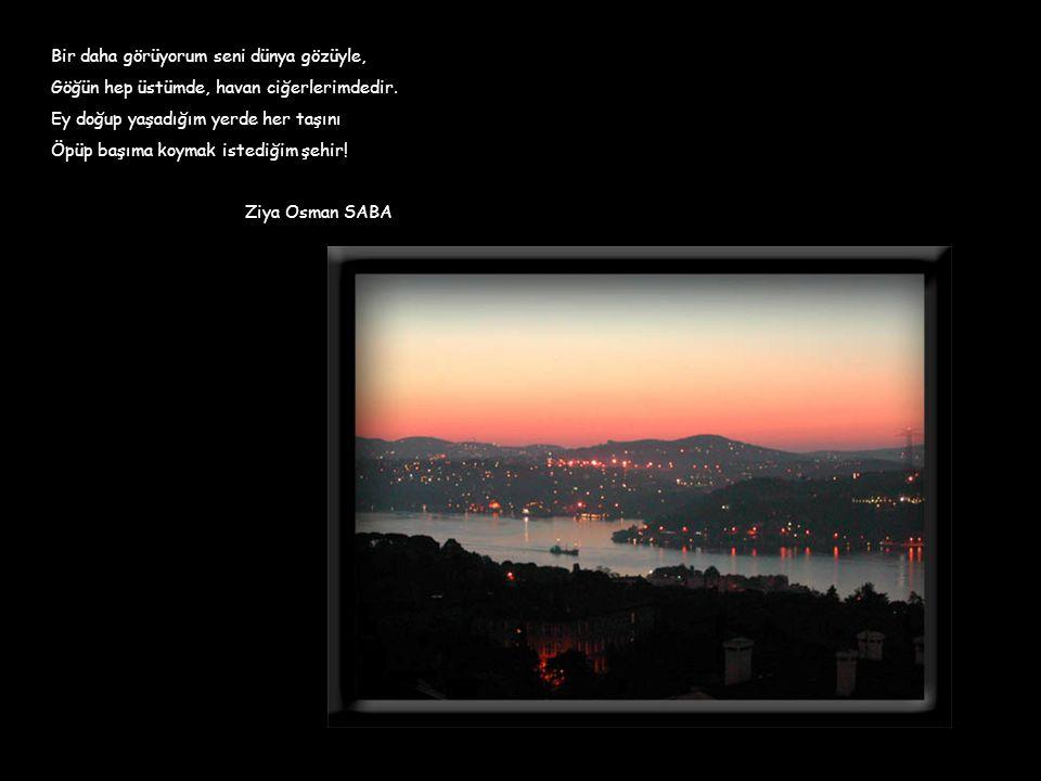 istanbul deniz deniz sevdiğim bir çakır mavi bir camgöbeği tuzlu su üstünde irili ufaklı tekneler kayıklar, yelkenliler, mavnalar kalleştir denizleri istanbulun sevdiğim istanbul kadar Ümit Yaşar Oğuzcan