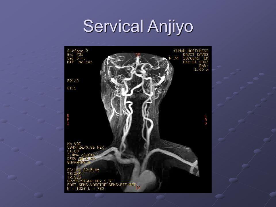 1-Brakiyosefalik gövde 2-Sağ Subklaviküler Arter 3-Sağ Vertebral Arter 4-Sağ ortak Karotid Arter 5-Sağ İnternal Karotid Arter 6-Sol Vertebral Arter 7-Sol İnternal Karotid Arter 8-Sol ortak Karotid Arter 9-Sol Subkalviküler Arter 10-Aorta