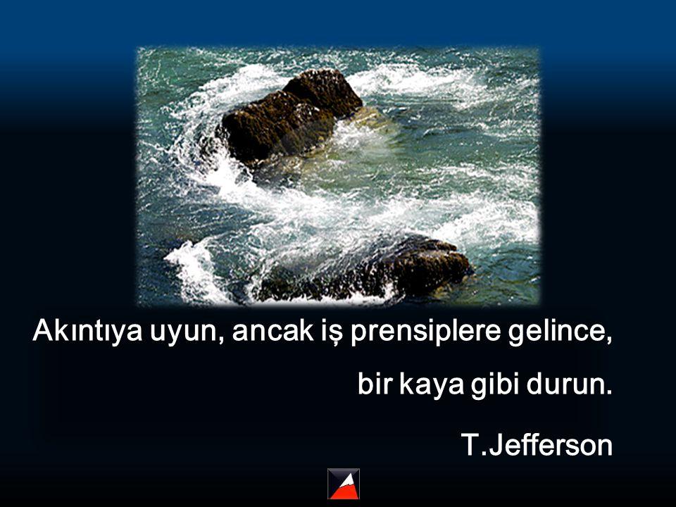 Akıntıya uyun, ancak iş prensiplere gelince, bir kaya gibi durun. T.Jefferson