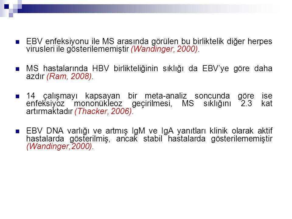 EBV enfeksiyonu ile MS arasında görülen bu birliktelik diğer herpes virusleri ile gösterilememiştir (Wandinger, 2000). MS hastalarında HBV birlikteliğ