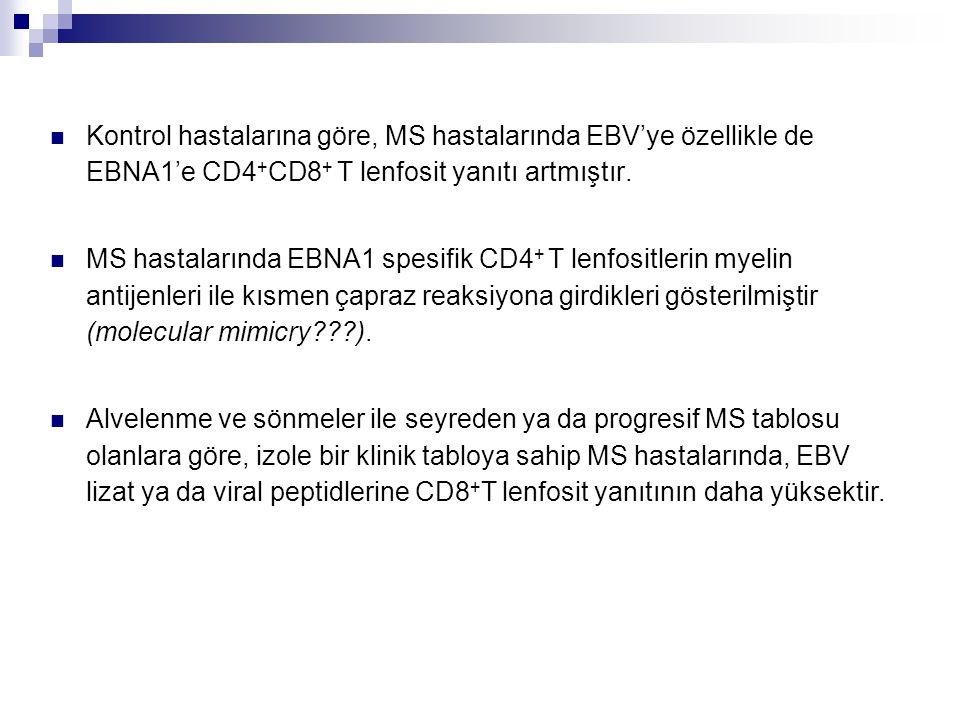 Kontrol hastalarına göre, MS hastalarında EBV'ye özellikle de EBNA1'e CD4 + CD8 + T lenfosit yanıtı artmıştır. MS hastalarında EBNA1 spesifik CD4 + T