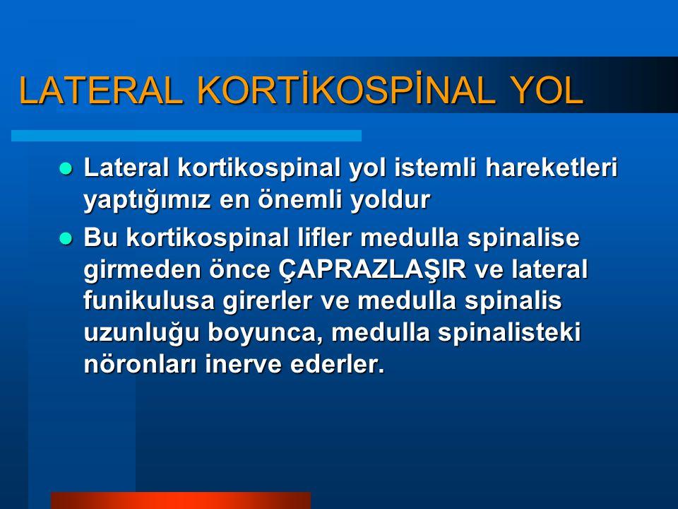 Gövde Ekstremiteler Traktus Kortikospinalis: İstemli hareket
