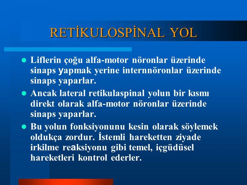 RETİKULOSPİNAL YOL Bu yol retiküler formasyondan başlar. Retiküler formasyondaki iki bölge medulla spinalise önemli aksonlar gönderir. Bunlardan biri