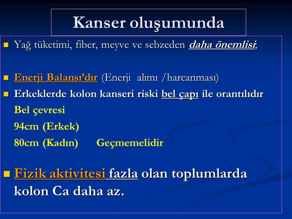 Besinlerdeki kanser yapıcı özellikler Doğal karsinojenler (Mantar zehirleri, Otlar ) Doğal karsinojenler (Mantar zehirleri, Otlar ) Kızartma ve yanma