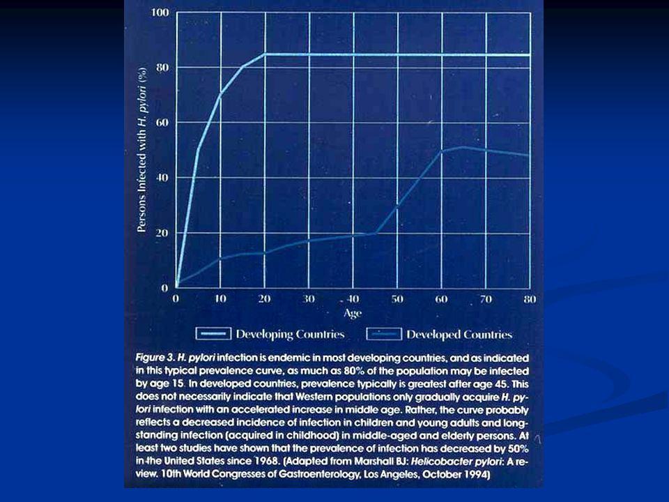 1994 te Helikobakter Pilori İnsanda Birinci grup karsinojenler arasında kabul edildi.