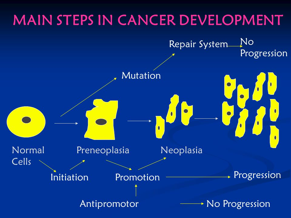 MAIN STEPS IN CANCER DEVELOPMENT Normal Cells PreneoplasiaNeoplasia InitiationPromotion Antipromotor No Progression Progression Mutation Repair System No Progression