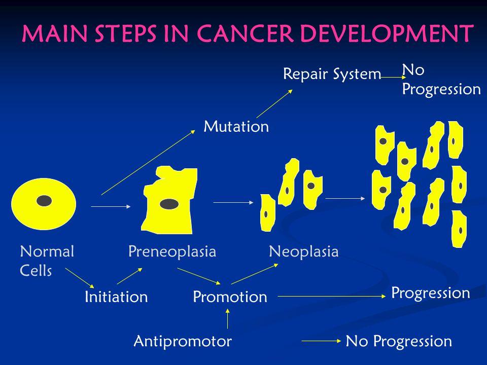 Main paths in Carcinogenesis INITIATION PROMOTION PROGRESSION