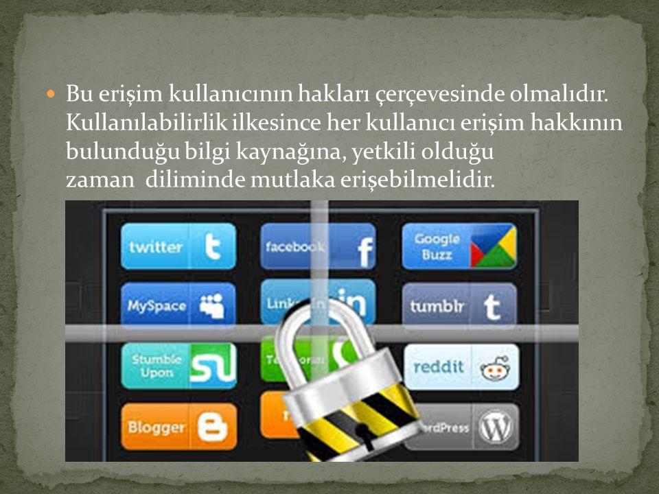 Bu erişim kullanıcının hakları çerçevesinde olmalıdır.