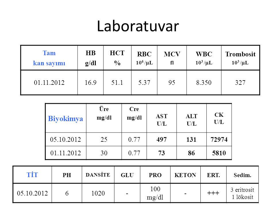 Laboratuvar Tam kan sayımı HB g/dl HCT % RBC 10 6 /  L MCV fl WBC 10 3 /  L Trombosit 10 3 /  L 01.11.201216.951.15.37958.350327 Biyokimya Üre mg/d