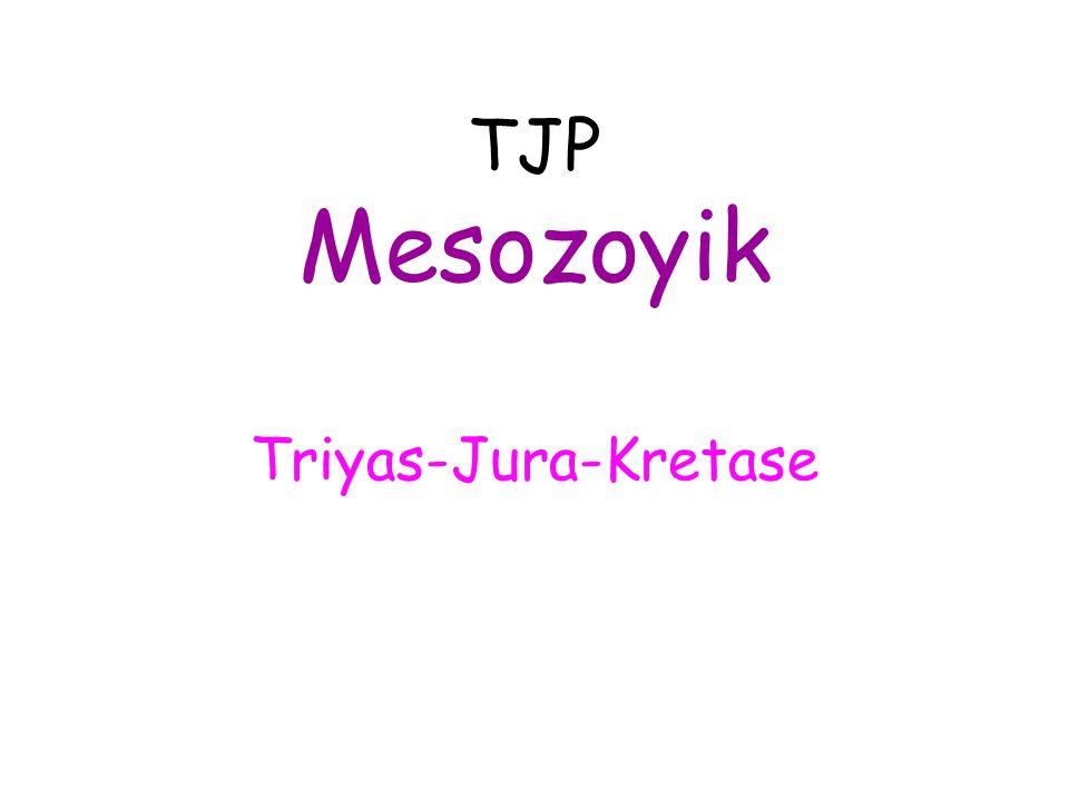 TJP Mesozoyik Triyas-Jura-Kretase