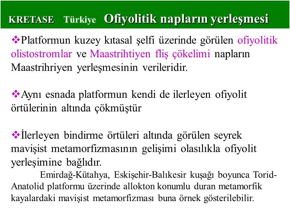KRETASE Ofiyolitik napların yerleşmesi KRETASE Türkiye Ofiyolitik napların yerleşmesi  Platformun kuzey kıtasal şelfi üzerinde görülen ofiyolitik oli