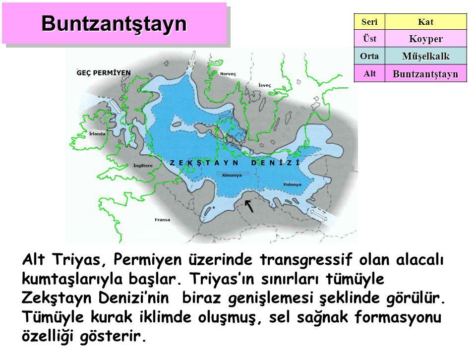 BuntzantştaynBuntzantştayn Alt Triyas, Permiyen üzerinde transgressif olan alacalı kumtaşlarıyla başlar. Triyas'ın sınırları tümüyle Zekştayn Denizi'n