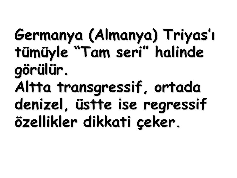"""Germanya (Almanya) Triyas'ı tümüyle """"Tam seri"""" halinde görülür. Altta transgressif, ortada denizel, üstte ise regressif özellikler dikkati çeker."""