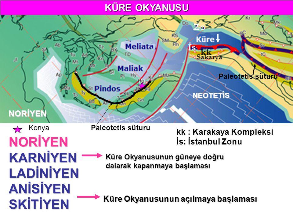 NORİYEN NEOTETİS Paleotetis süturuNORİYENKARNİYENLADİNİYENANİSİYENSKİTİYEN Küre Okyanusunun açılmaya başlaması Küre Okyanusunun güneye doğru dalarak kapanmaya başlaması kk : Karakaya Kompleksi İs: İstanbul Zonu Paleotetis süturuKonya KÜRE OKYANUSU