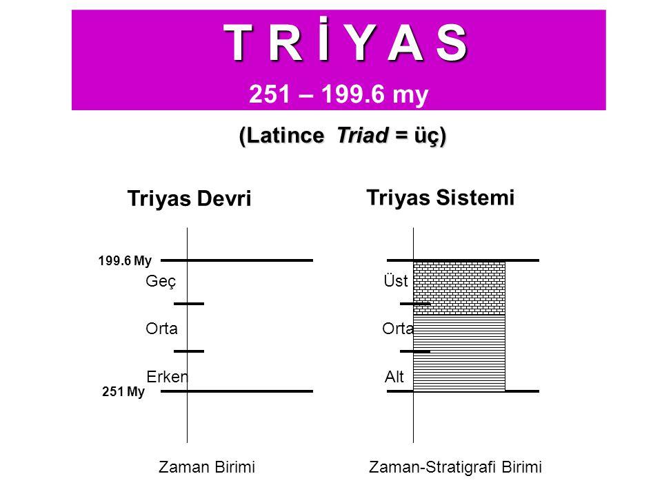 (Latince Triad = üç) T R İ Y A S 251 – 199.6 my 251 My 199.6 My Triyas Devri Erken Orta Geç Triyas Sistemi Alt Orta Üst Zaman BirimiZaman-Stratigrafi