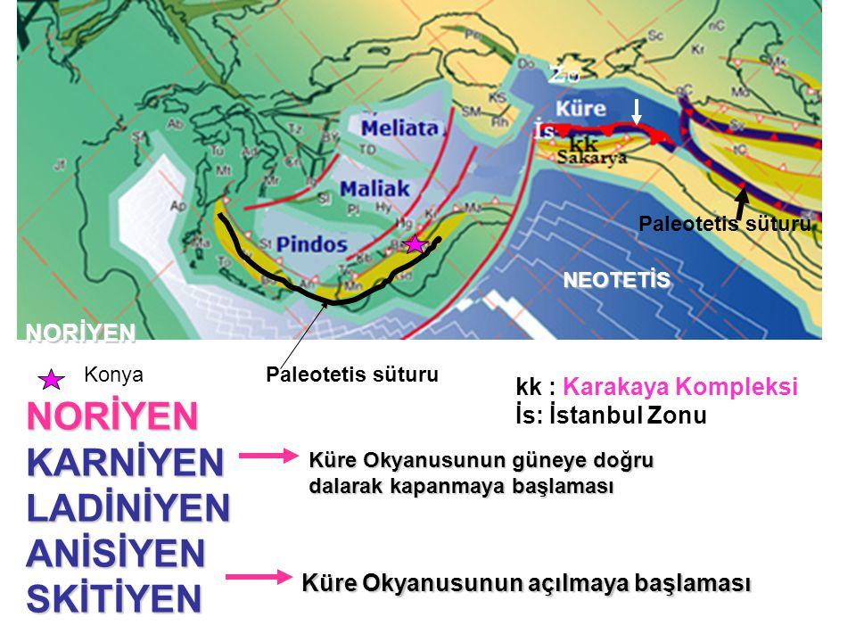 NORİYEN NEOTETİS Paleotetis süturuNORİYENKARNİYENLADİNİYENANİSİYENSKİTİYEN Küre Okyanusunun açılmaya başlaması Küre Okyanusunun güneye doğru dalarak kapanmaya başlaması kk : Karakaya Kompleksi İs: İstanbul Zonu Paleotetis süturuKonya