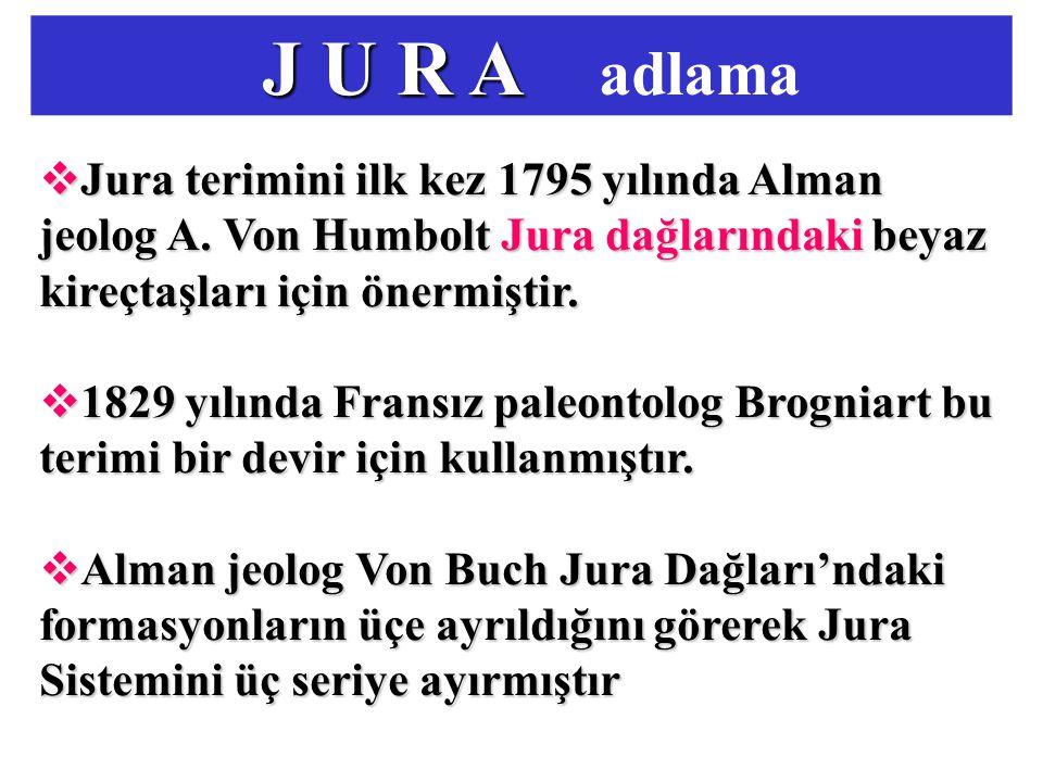 J U R A J U R A adlama  Jura terimini ilk kez 1795 yılında Alman jeolog A. Von Humbolt Jura dağlarındaki beyaz kireçtaşları için önermiştir.  1829 y