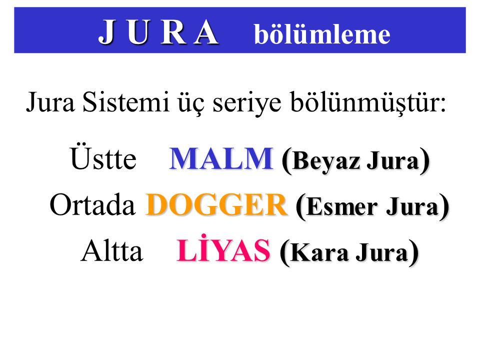 J U R A J U R A bölümleme Jura Sistemi üç seriye bölünmüştür: MALM ( Beyaz Jura ) Üstte MALM ( Beyaz Jura ) DOGGER ( Esmer Jura ) OrtadaDOGGER ( Esmer