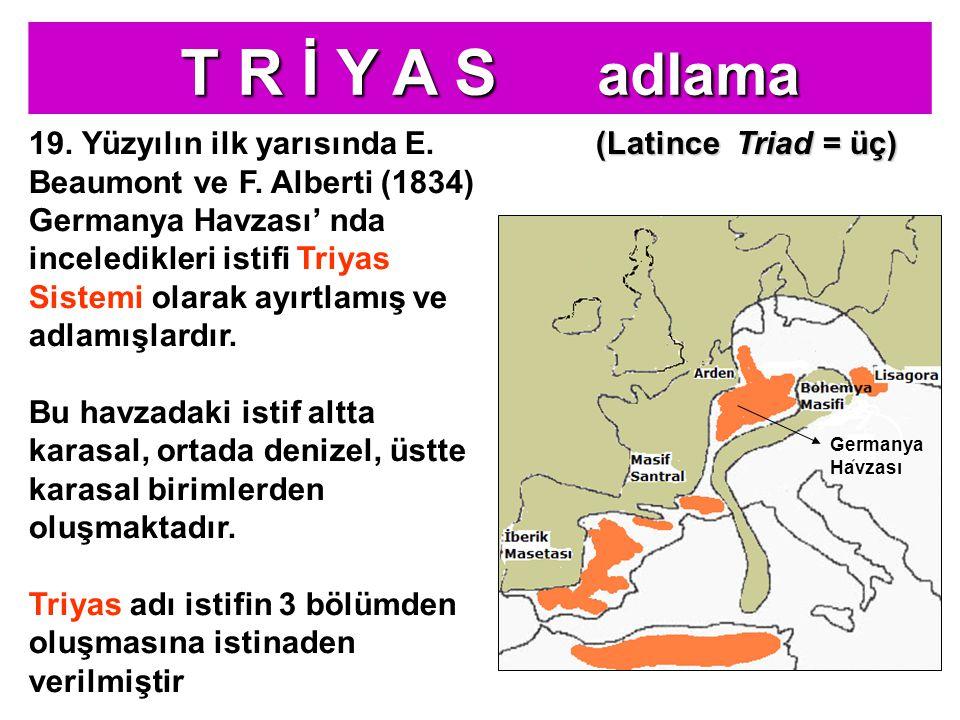 Germanya Havzası Bu Triyas, epikontinental tipte olup tipik olarak Suab, Frankoni, Turingen ve Hanover bölgelerini kapsayan Germanya Havzası'nda görüldüğü için GERMANYA TRİYAS' ı denir Triyas istifleri, Germanya Havzası'ndan kuzeye gidildikçe karasal, güneye gidildikçe denizel özelliklere geçer Bu nedenle 3 tip Triyas ayırtlanmıştır