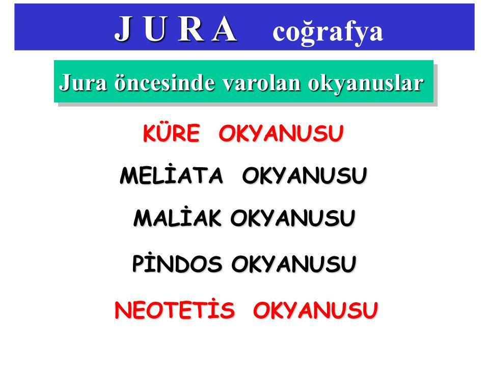 J U R A J U R A coğrafya Jura öncesinde varolan okyanuslar KÜRE OKYANUSU MELİATA OKYANUSU MALİAK OKYANUSU PİNDOS OKYANUSU NEOTETİS OKYANUSU