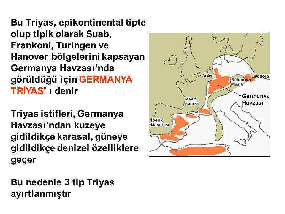Germanya Havzası Bu Triyas, epikontinental tipte olup tipik olarak Suab, Frankoni, Turingen ve Hanover bölgelerini kapsayan Germanya Havzası'nda görül